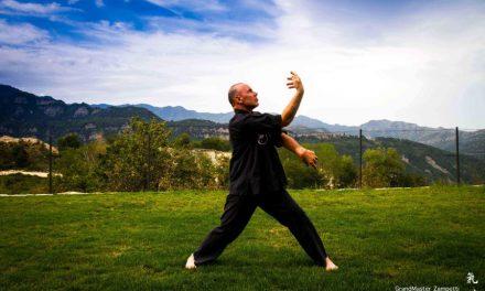 Qi Gong: La meditazione passa per Venarotta
